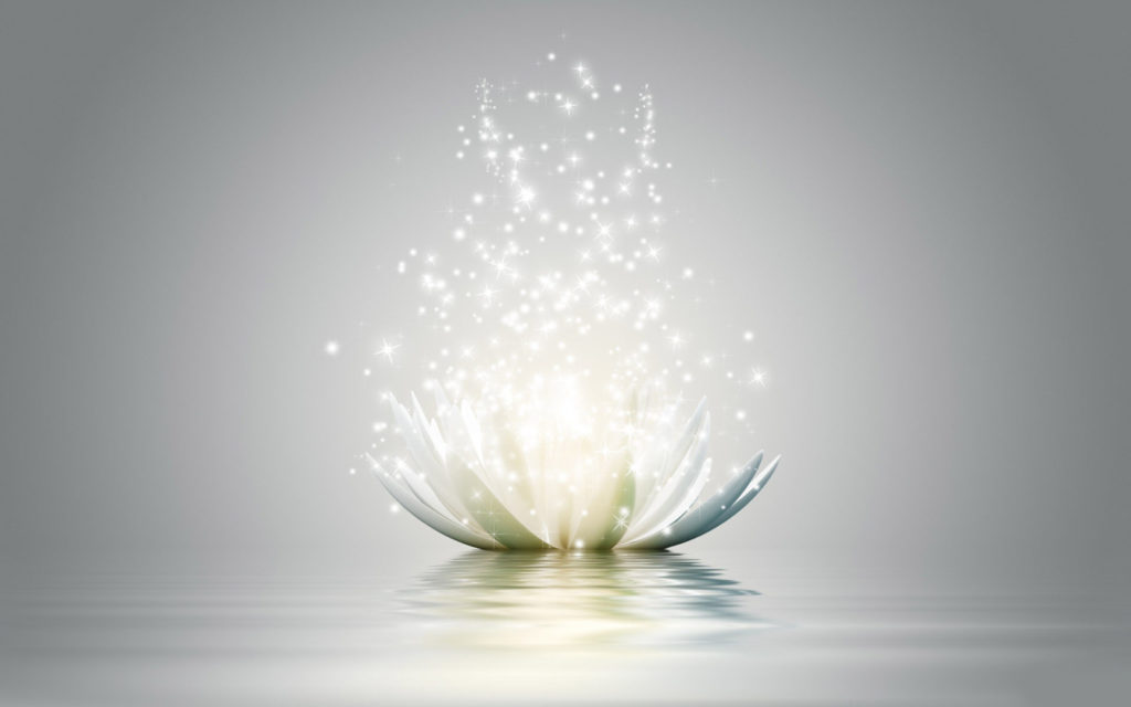 shining-lotus-flower-wallpaper-flowers-wallpapers-wallpaper-lotus-flower-for-walls-shining-flowers-wallpapers