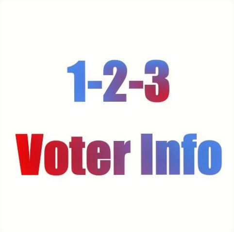 voter info leads