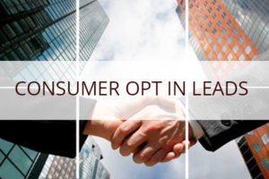 consumer opt in leads